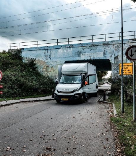 Seinen op groen voor terugkeer muurschildering Biddlebrug: 'Hoort bij Westervoort'
