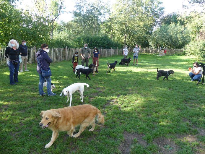 De hondenuitloopweide in het Kaandelpark.