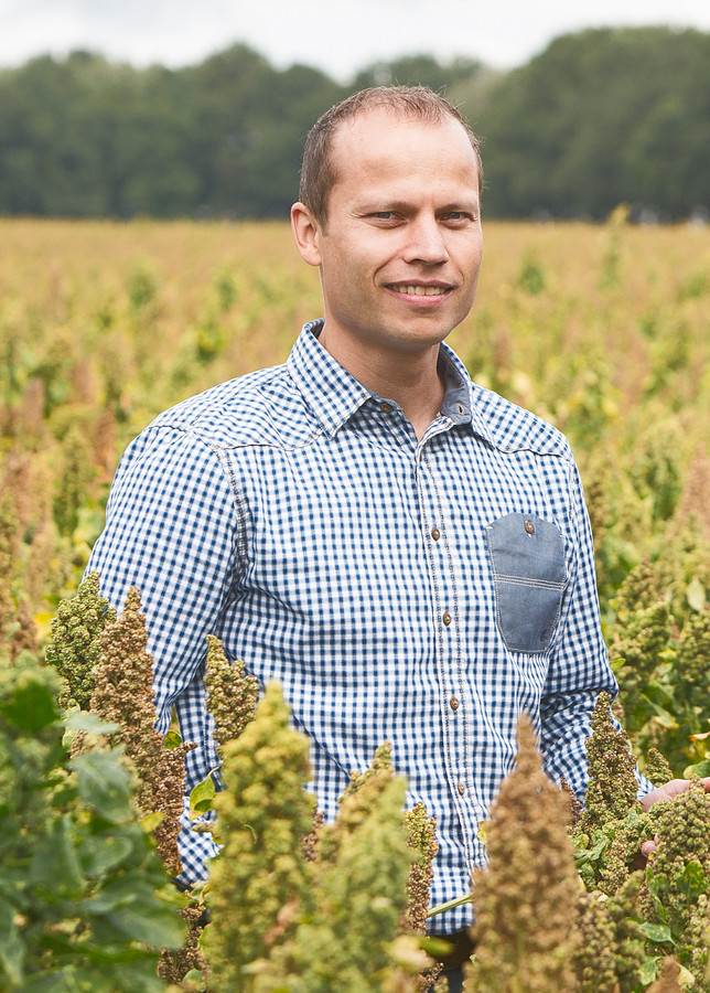 Rens Kuijten tussen een geslaagd veld vol Nederlandse quinoa.
