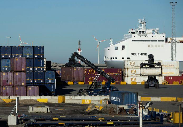 De transmigranten werden uit een container gehaald in de haven van Zeebrugge.