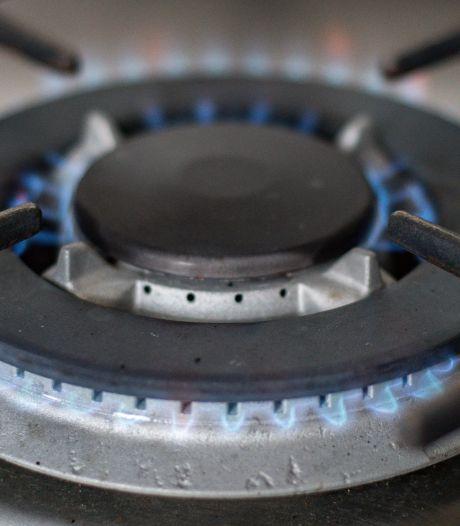 Aardgasvrij wonen nog ver weg, maar Olst-Wijhe maakt er werk van: 'Biogas via koeienmest kan de toekomst zijn'