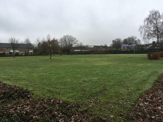 De plek van de vroegere Toermalijn-school is nu grasveld. Hier moet de nieuwbouw van de Vuurvogel komen.