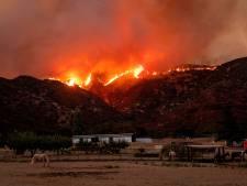 Un gigantesque incendie fait rage à une centaine de kilomètres de Los Angeles