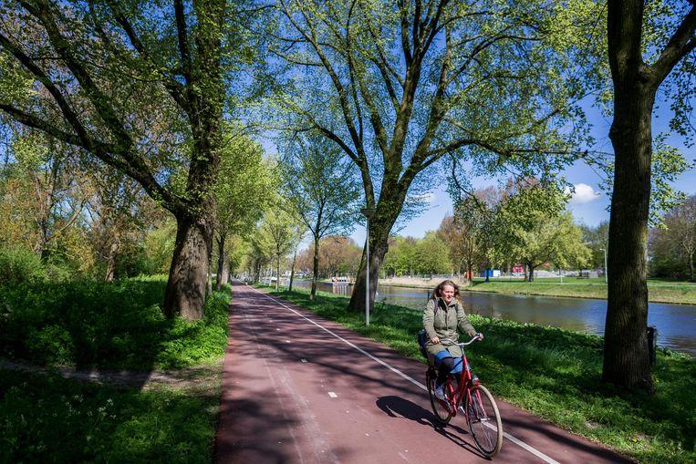 Noorderpark Beeld Rink Hof