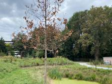 Tweehonderd jaar oude privétuin binnenkort opengesteld voor alle Gentenaars