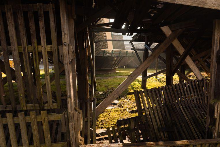 De molen en het omliggende terrein zijn de laatste jaren niet goed onderhouden. Beeld Willem de Kam