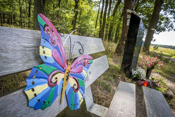 Een vlinder hangt op het bankje bij het monument op de Brunssummerheide, waar in 1998 het lichaam van de 11-jarige Nicky Verstappen werd gevonden.