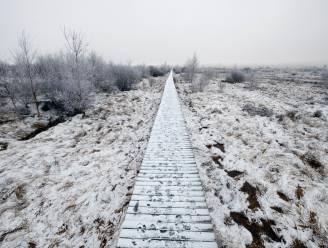 10 centimeter sneeuw op Hoge Venen