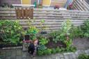 Veel groen in de tuin, zorgt voor beter waterafvoer.
