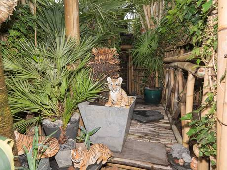 Junglehuis in Roosendaal zoekt Tarzan en Jane