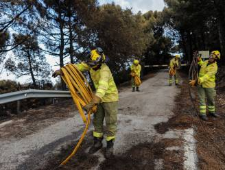 Brandweer heeft bosbranden in zuiden van Spanje onder controle