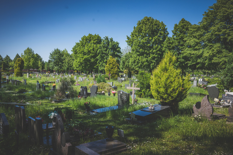 De Westerbegraafplaats in Gent, waar de feiten zich afspeelden. Beeld Wannes Nimmegeers