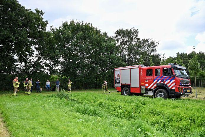 In Oisterwijk werd zaterdag een das gevonden. Wonder boven wonder kon het dier levend gered worden.