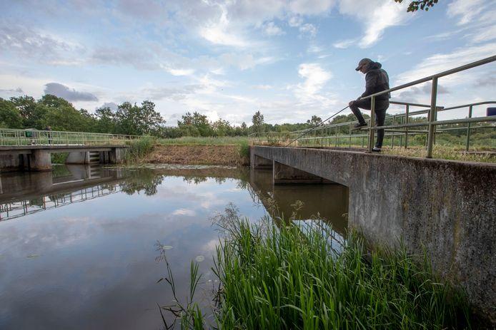 Vissen bij de Dommel in Eindhoven. Maar hoee staat het met de waterkwaliteit?