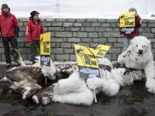 Greenpeace klimt op boorplatform Shell