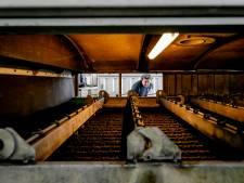 AEB verbrandt alsnog slib van waterschap, miljoenenclaim van de baan
