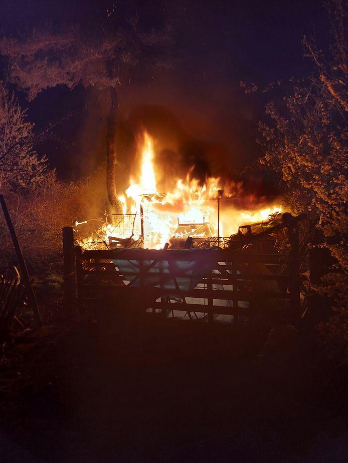 Metershoge vlammen vernielden twee oude auto's onder een afdak in een tuin in Reningelst.