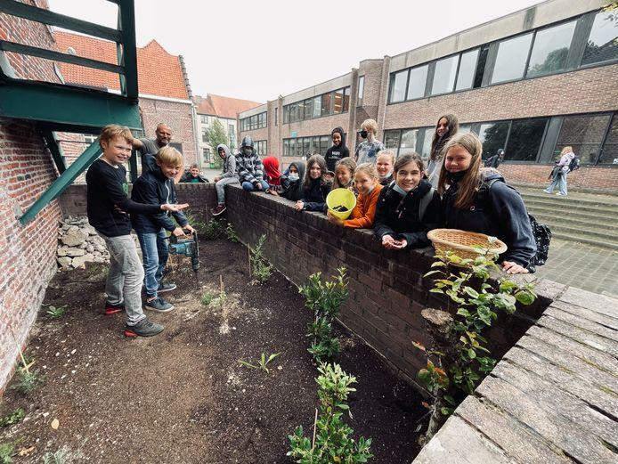 De leerlingen verplaatsen wormen en insecten naar het nieuw stukje tuin.
