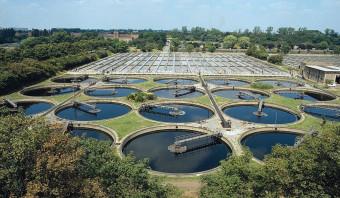 Waterbedrijven slaan alarm: mest bedreigt drinkwaterwinning