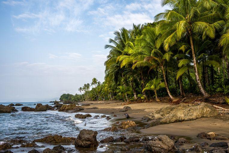 Het strand van Guachalito. Beeld Ynske Boersma