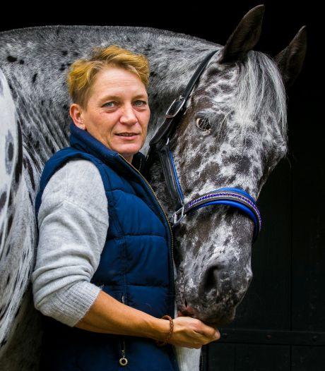 Judith bleef geloven in het herstel van haar beschoten paard Wonderboy: 'Ik wilde hem niet opgeven'