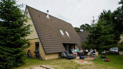 Helft Nederlandse vakantiehuisjes zit vol schimmels, bacteriën en beestjes