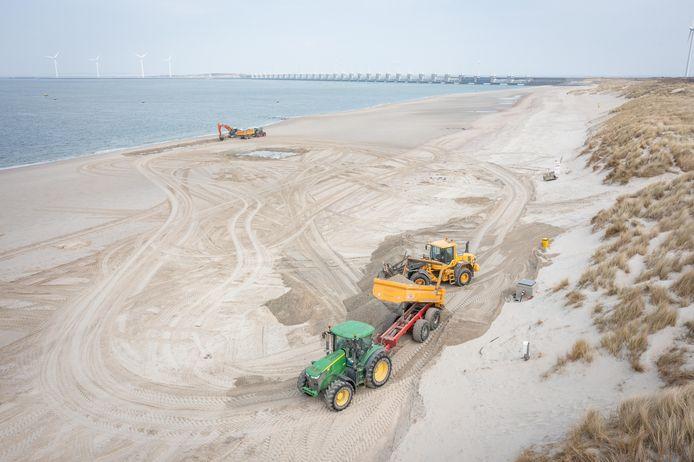 Vanaf de vloedlijn wordt er weer zand naar de voet van de duinen gebracht. Binnen een dag of tien moet er weer genoeg zand liggen om huisjes te kunnen plaatsen en strandgangers te kunnen herbergen.