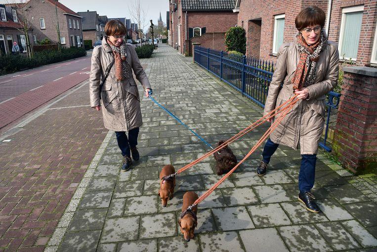 Een eeneiige tweeling laat hun honden uit. Wetenschappers begrijpen eindelijk beter hoe deze genetisch identieke zussen zijn ontstaan. Beeld Marcel van den Bergh