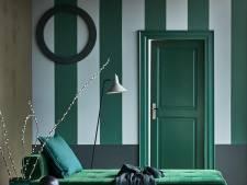 Meer sfeer in je huis met kleur op de muur: 'Kleine investering met een groot effect'