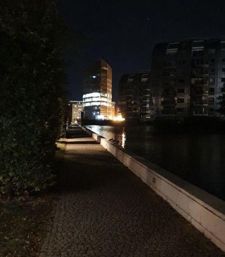 Licht aan het einde van de tunnel voor donkere Hofvijver