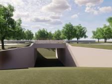 Wildtunnel van drie meter diep moet eind maken aan 'dodenweg voor dieren' tussen Heeze en Someren