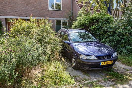 Er is veel te doen om de tuinen op de Berenklauw in Deventer.
