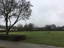 Vuurvogel mag naar Kroonwijk