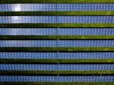 Kwekerij in Luttelgeest legt zonnepanelen op waterbassin