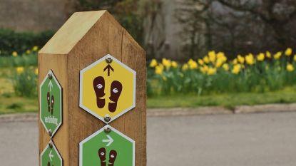 Drie nieuwe wandelingen in Hamont-Lo (maar houd wel afstand!)
