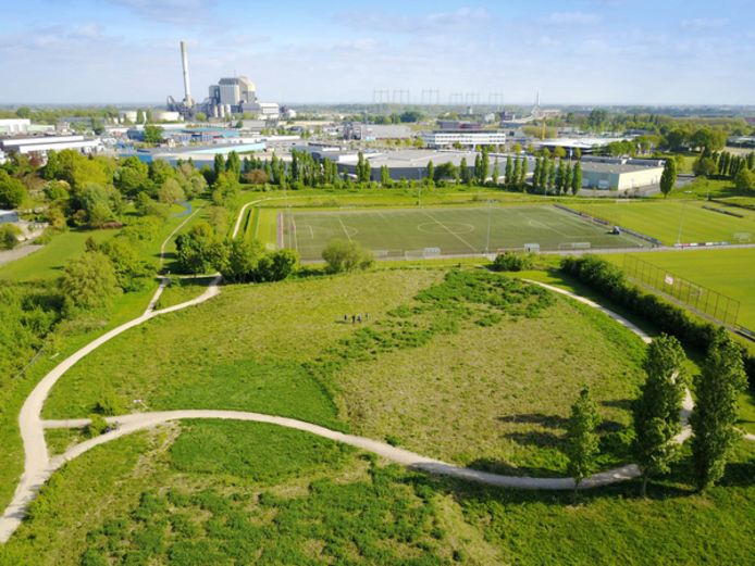 Het voedselbos in Hees, groene buffer tussen woonwijk en industrieterrein.