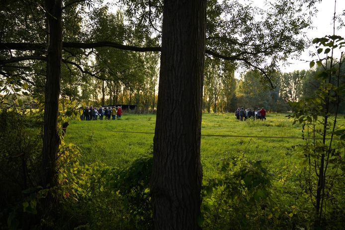 Het gebied aan de Molenbeek.