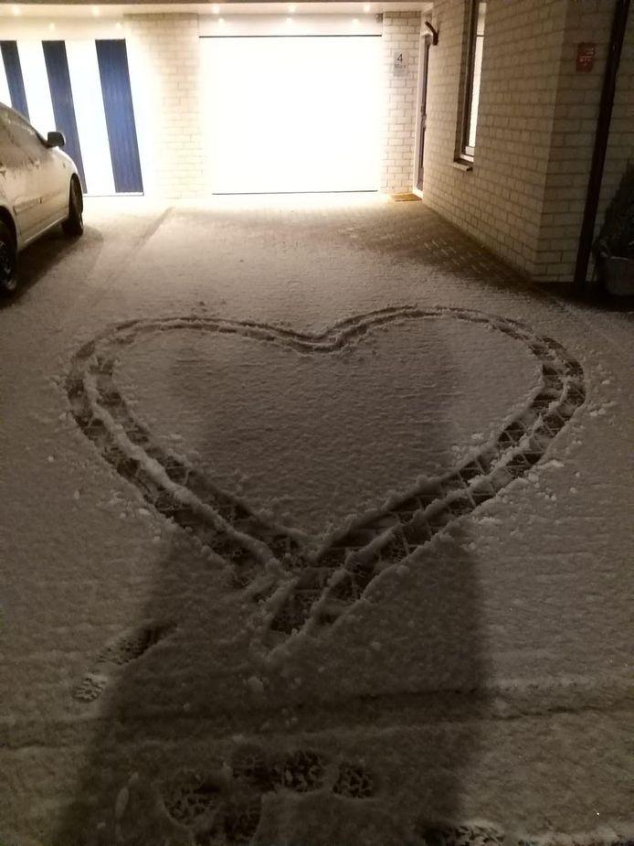 Sneeuwhart in Huissen.