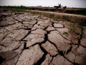 Braziliaanse elektriciteit peperduur door droogte