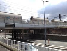 Onderzoek moet spoorlobby goederenvervoer Den Bosch en Zaltbommel extra zetje geven
