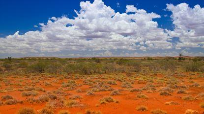 Australische familie krijgt autopech in woestijn en sterft