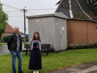 Onthardingsproject in Laar moet zorgen voor meer groen op openbare ruimtes