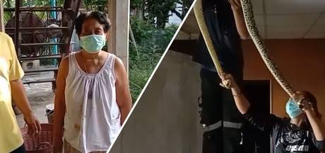 Drie meter lange python verstopt zich in plafond oudere vrouw