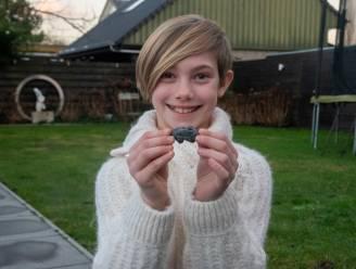 Heeft Alizée (10) meteoriet gevonden in haar tuin in Destelbergen?