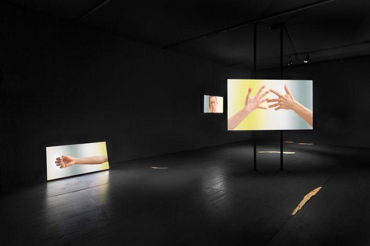 Het werk van Katarina Zdjelar, die de kijker zich laat concentreren op het expressieve contact van handen en armen. Beeld Daniel Nicolas