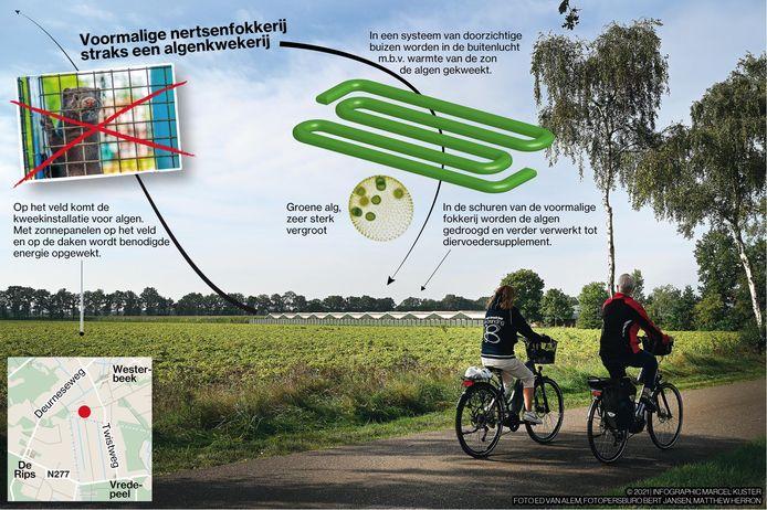 Het plan voor de nieuwe algenkwekerij.