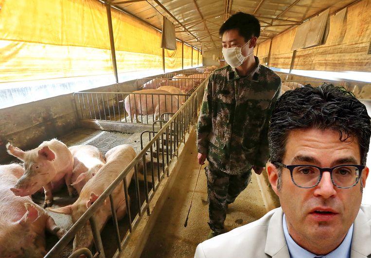 """Dit virus is om verschillende redenen een ernstige kandidaat om een pandemie te veroorzaken"""", zegt viroloog Steven Van Gucht."""