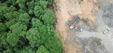 Nederland een van de grootste EU-landen gelinkt aan ontbossing
