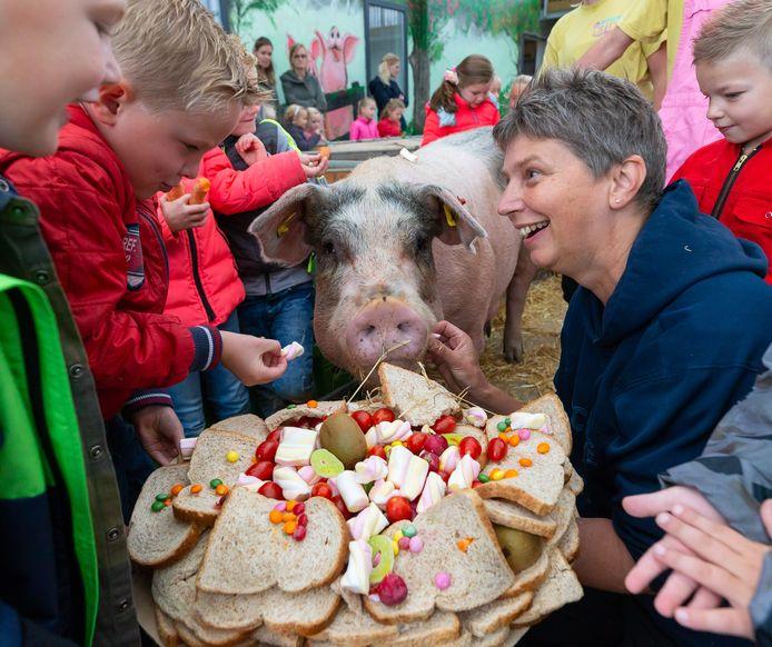 Varkenshoudster Annemarie Noordman uit Lemelerveld zet vaker de stallen open voor publiek. Nu doet ze dat tijdens Boeren Pakken Uit-weken in het Vechtdal.