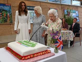 Wanneer de Queen het script negeert: Elizabeth snijdt cake met ceremonieel zwaard